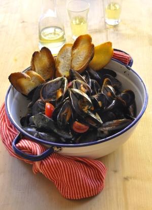 musselsportrait2-NS